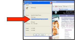 "Screenshot of sample webpage with arrow indicating where the user can copy the image location in the ""properties"" dialogue box"